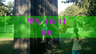 壁系の技を紹介
