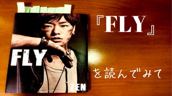 ZEN FLY